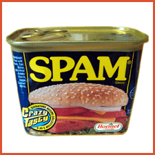 Confessions of a Google Spammer