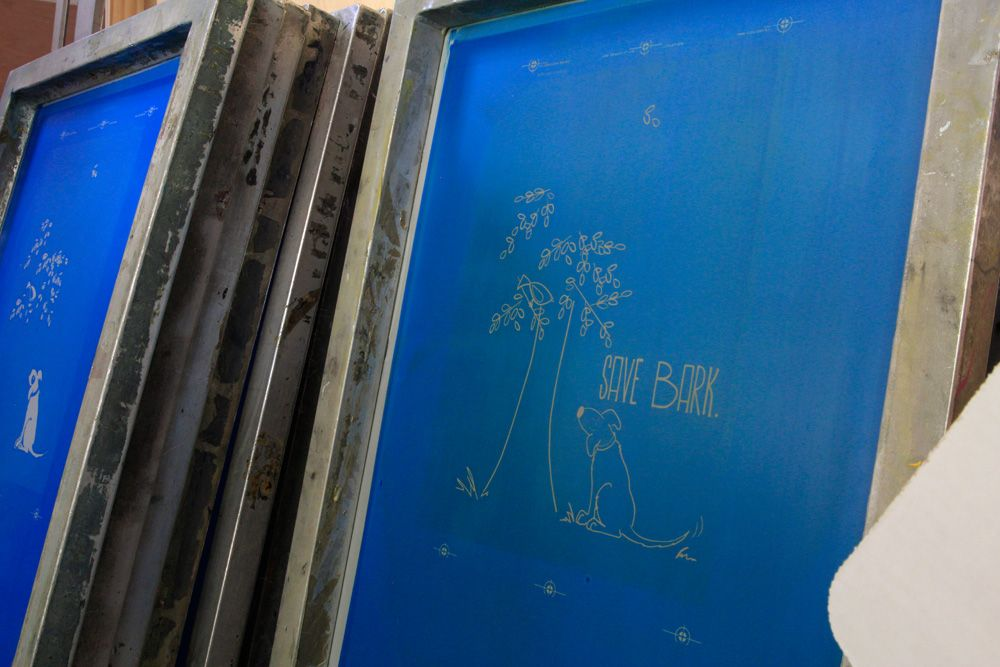 Blue Screenprinting Screens